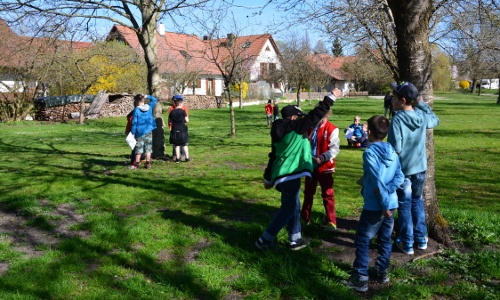 brucker-land-schule-streuobstwiese